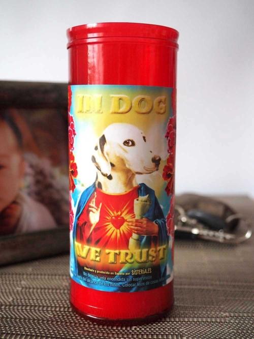 """velon rojo con imagen divertida de perro dalmata santo y texto """"in dog we trust"""" de Sisteria Shop"""