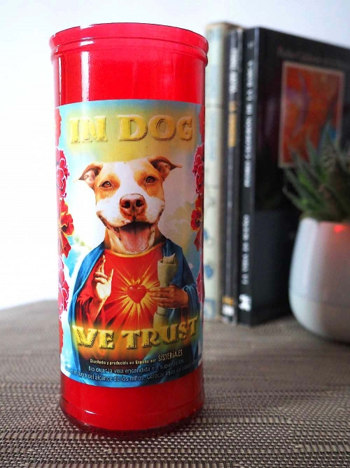 "velon rojo con imagen divertida de perro pitbull santo y texto ""in dog we trust"" de Sisteria Shop"