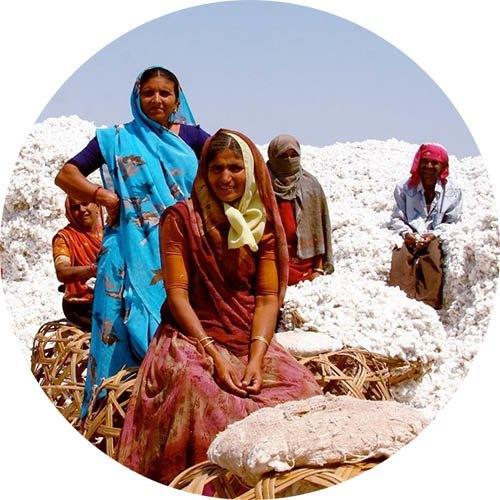 mujeres indias sobre montañas de algodon